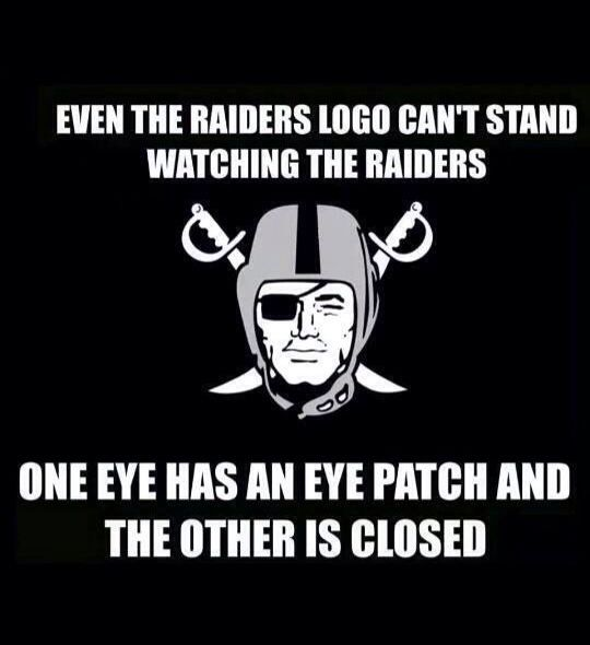 Raider Hater Raiderhater Net A Place To Celebrate Your
